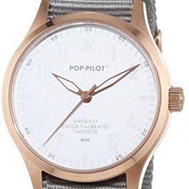 Pop-Pilot Uhr | Armbanduhr Pilgrim | graue Armbanduhr | Armbanduhr rmit grauem nylonband